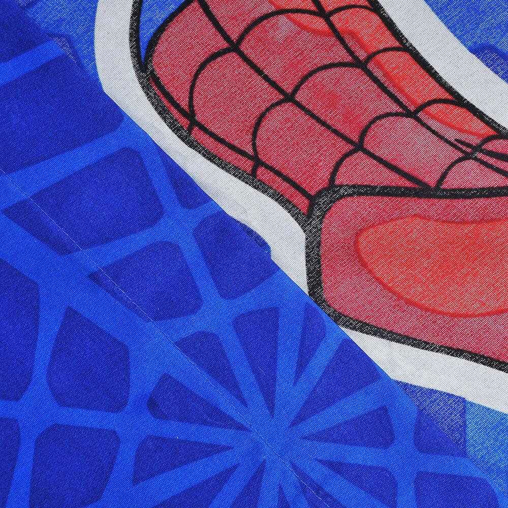 Sab.M/F.1.5P Spiderman image number 1.0