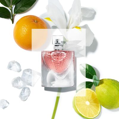 Perfume Lancôme La Vie Est Belle / 75Ml / Edp
