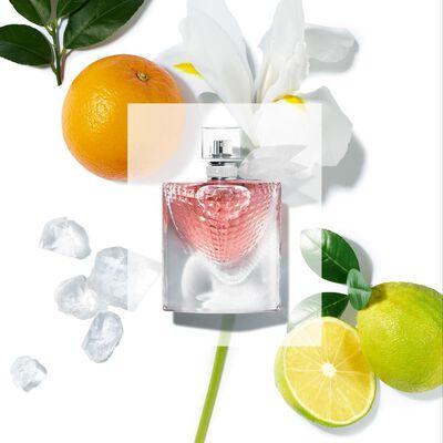 Perfume La Vie Est Belle Eclat Lancôme / 75 Ml / Eau De Parfum