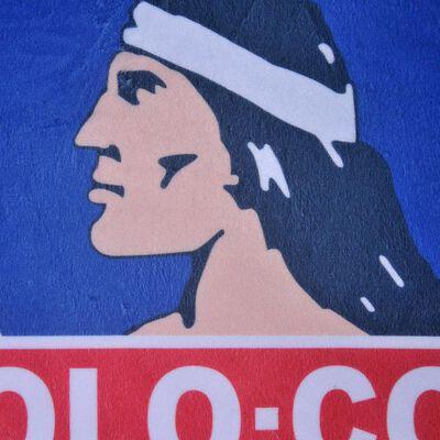 Cojin Colo-Colo Campeones