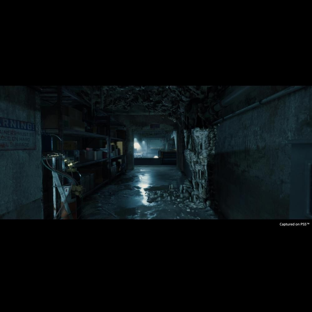 Juego Playstation 5 Sony Death Standing Directors Cut image number 6.0