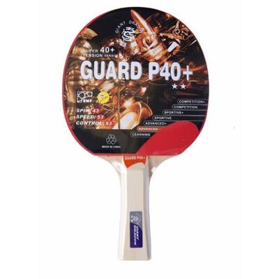 Paleta De Ping Pong Giant Dragon 2 Star