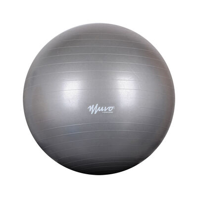 Pelota Gym De Yoga Muvo Crf0201