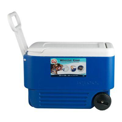 Cooler Igloo Ig45004  / 36 Litros