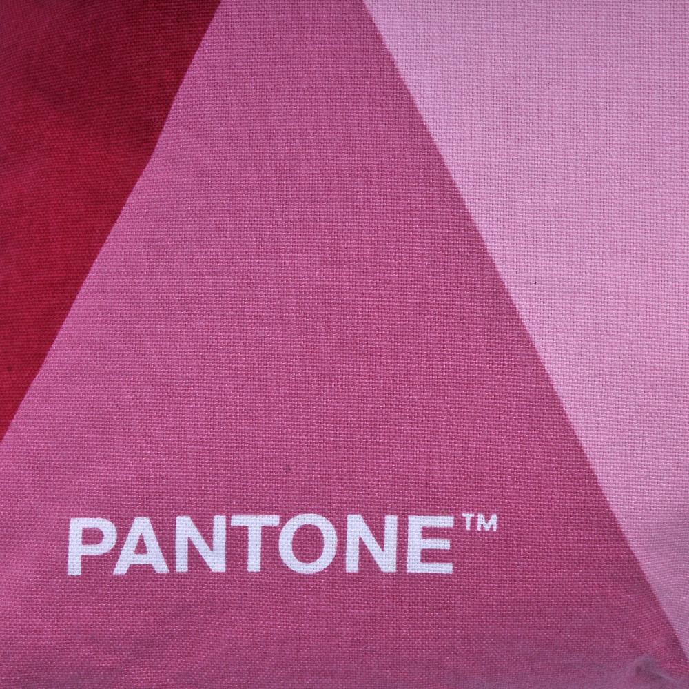 Cojin Pantone Algodón / 40X40 Cm image number 1.0