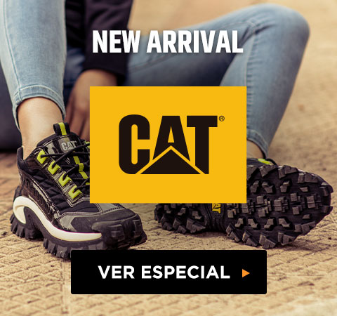NEW ARRIVAL  CAT
