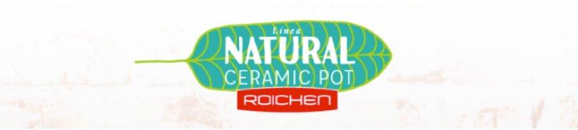 Linea Natural Ceramic Pot - Roichen