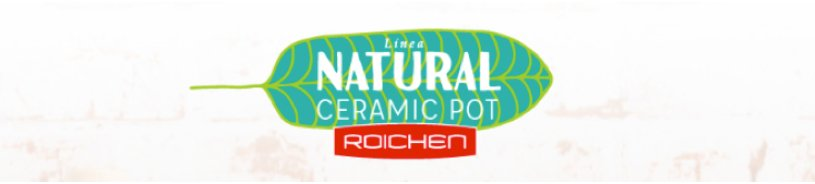Linea Natural Ceramic Pot - Roichen
